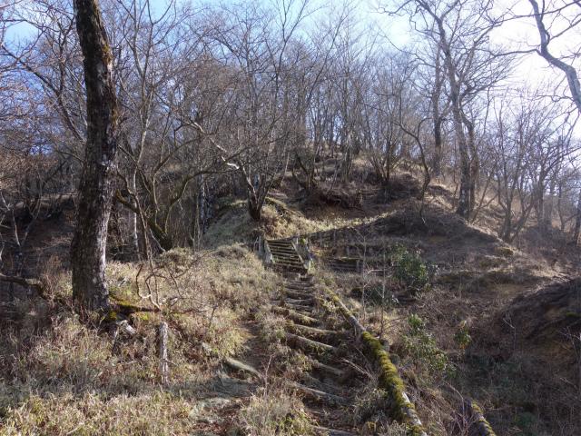 塔ノ岳(尊仏ノ土平~西尾根)登山口コースガイド 山頂直下の階段【登山口ナビ】