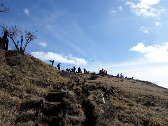 塔ノ岳(尊仏ノ土平~西尾根)登山口コースガイド 山頂直下【登山口ナビ】