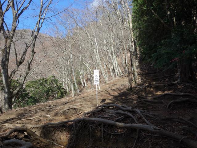 塔ノ岳(二俣~小丸尾根)登山口コースガイド 小丸1000m看板【登山口ナビ】