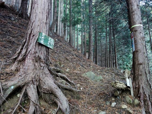 大室山(折花橋~鐘撞山)登山口コースガイド 指導標【登山口ナビ】