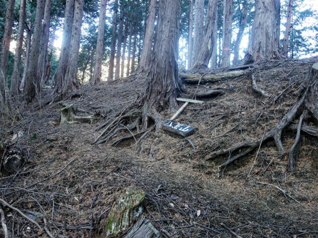 大室山(折花橋~鐘撞山)登山口コースガイド 県界尾根分岐【登山口ナビ】