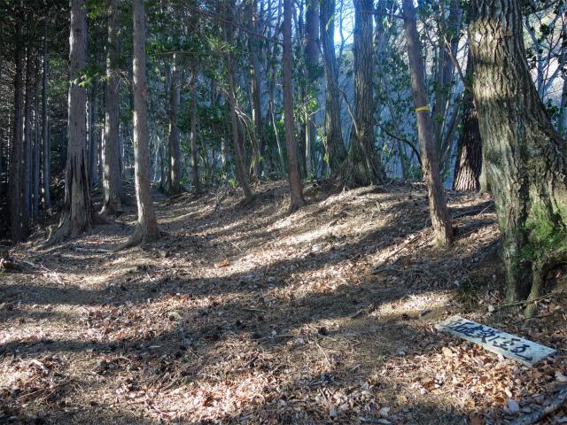 大室山(折花橋~鐘撞山)登山口コースガイド 県界尾根【登山口ナビ】