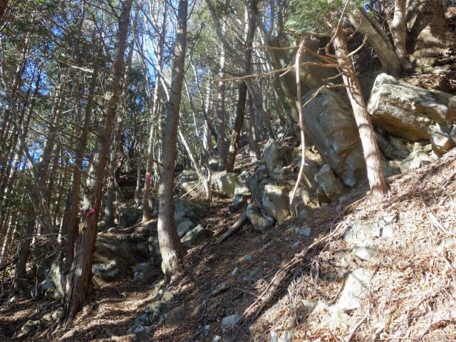 大室山(折花橋~鐘撞山)登山口コースガイド 大岩【登山口ナビ】