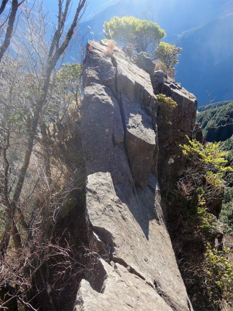 大室山(折花橋~鐘撞山)登山口コースガイド 黒岩【登山口ナビ】