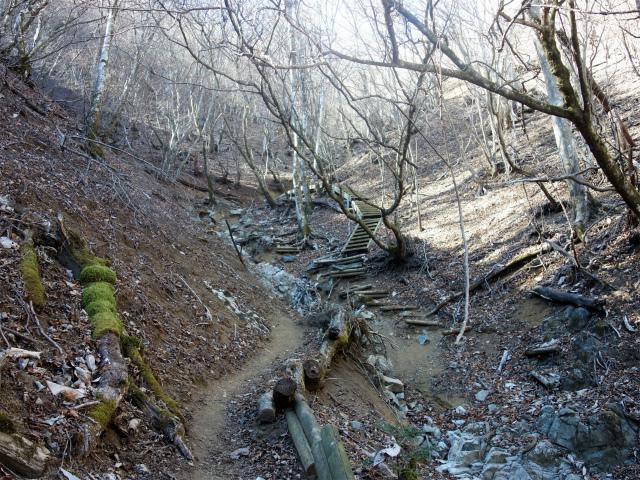 大室山(白石峠~加入道山)登山口コースガイド 沢の源頭【登山口ナビ】