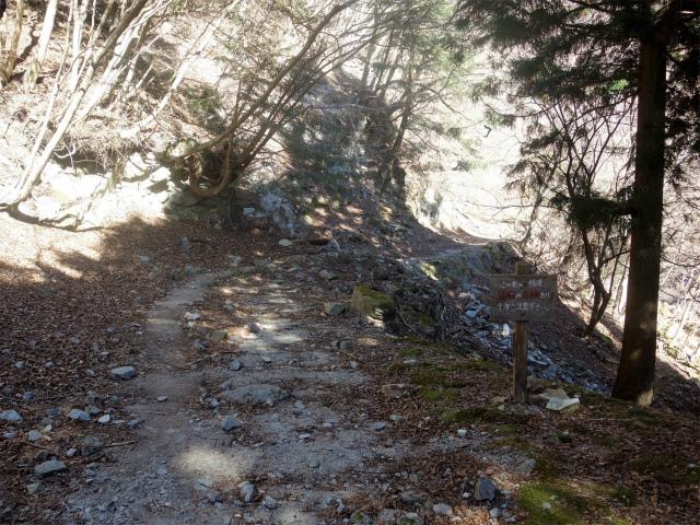 大室山(用木沢出合~犬越路コース) 登山口コースガイド【登山口ナビ】