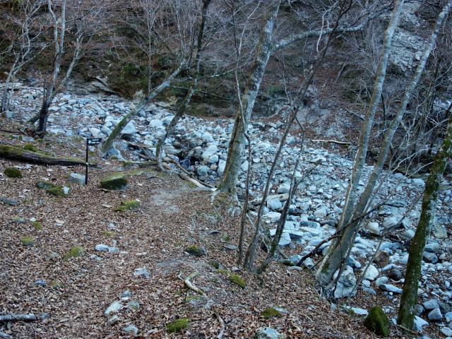 大室山(用木沢出合~犬越路コース) 登山口コースガイド 渡渉【登山口ナビ】