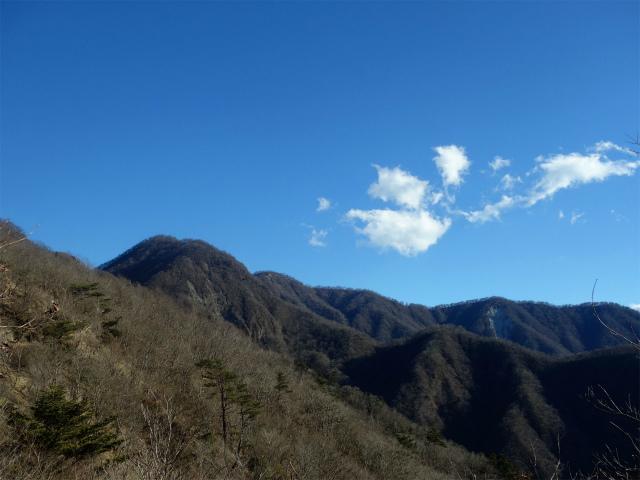 大室山(用木沢出合~犬越路コース) 登山口コースガイド 犬越路直下からの展望【登山口ナビ】