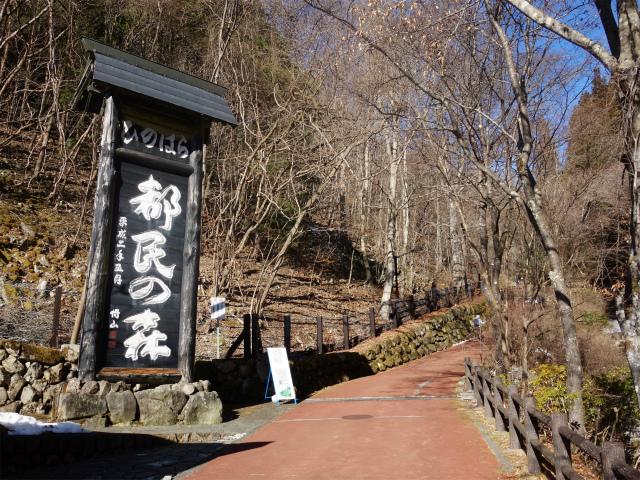 三頭山(大滝~石山~深山の路)都民の森出会いの路【登山口ナビ】