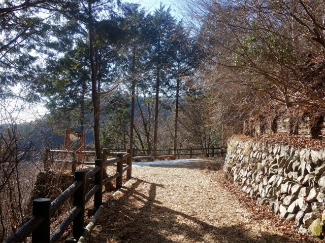 三頭山(大滝~石山~深山の路)大滝の路展望台【登山口ナビ】