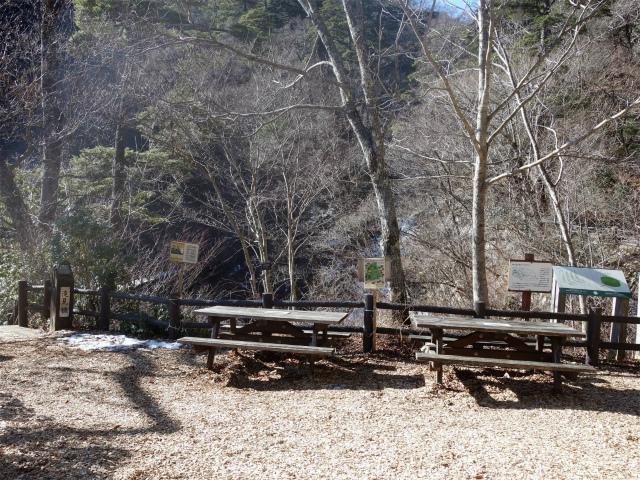 三頭山(大滝~石山~深山の路)滝見橋分岐【登山口ナビ】