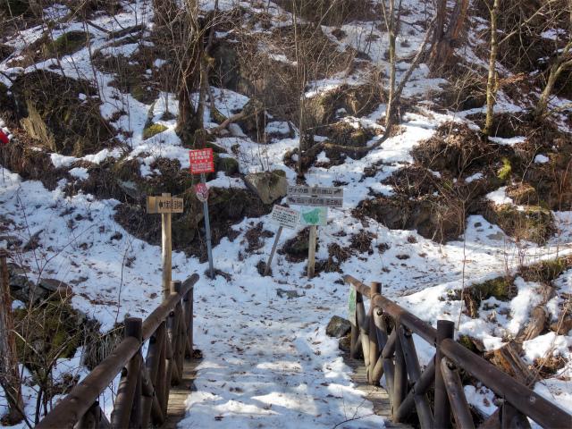 三頭山(大滝~石山~深山の路)ブナの路分岐【登山口ナビ】
