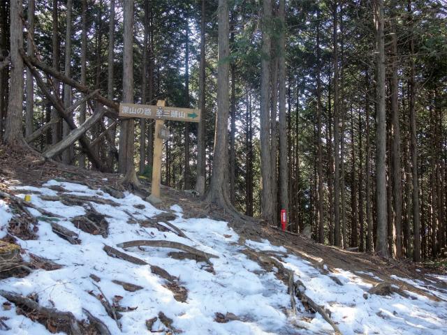 三頭山(大滝~石山~深山の路)深山の路分岐【登山口ナビ】