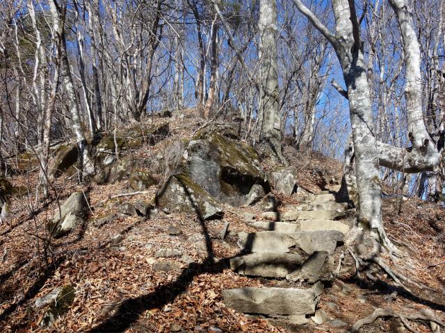 三頭山(大滝~石山~深山の路)山頂直下【登山口ナビ】