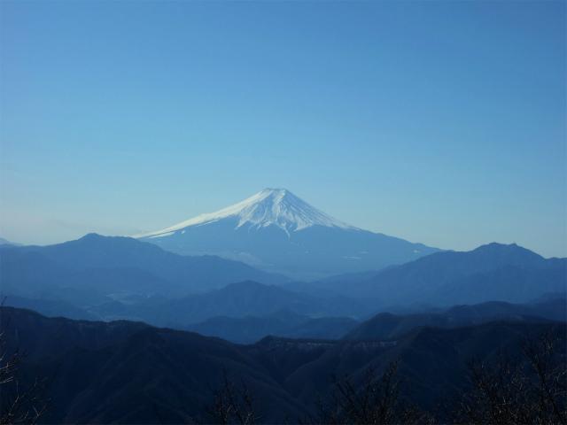 三頭山(大滝~ブナの路)【登山口ナビ】