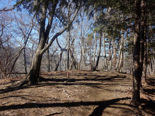 笹子雁ヶ腹摺山(吉田口~笹子峠周回)登山口コースガイド 1188mの平場【登山口ナビ】