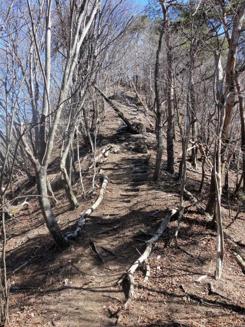 笹子雁ヶ腹摺山(笹子峠)登山口コースガイド 階段の急登【登山口ナビ】