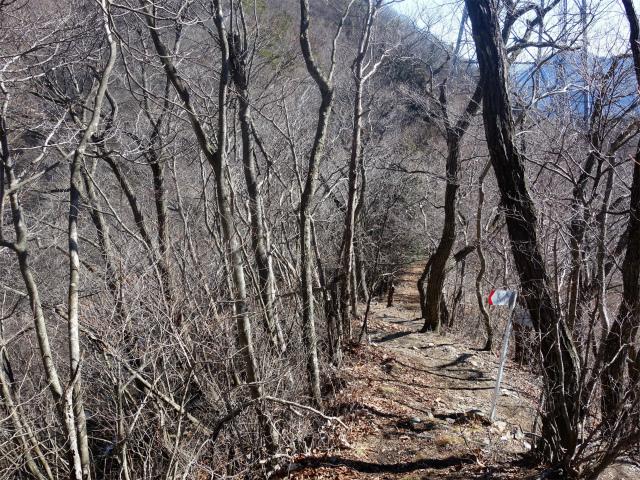 笹子雁ヶ腹摺山(笹子峠)登山口コースガイド 尾根道と新道の合流点【登山口ナビ】