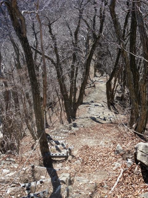 笹子雁ヶ腹摺山(吉田口~笹子峠周回)登山口コースガイド 階段【登山口ナビ】