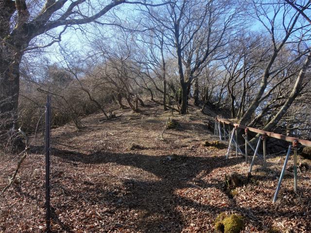大山(地獄沢橋~大山北尾根)登山口コースガイド【登山口ナビ】