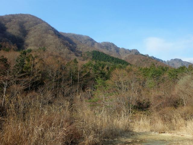鬼ヶ岳(淵坂峠~毛無山~十二ヶ岳)登山口コースガイド 大淵谷【登山口ナビ】