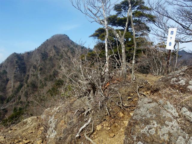 鬼ヶ岳(淵坂峠~毛無山~十二ヶ岳)登山口コースガイド 四ヶ岳【登山口ナビ】