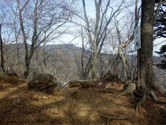 鬼ヶ岳(淵坂峠~毛無山~十二ヶ岳)登山口コースガイド 六ヶ岳【登山口ナビ】