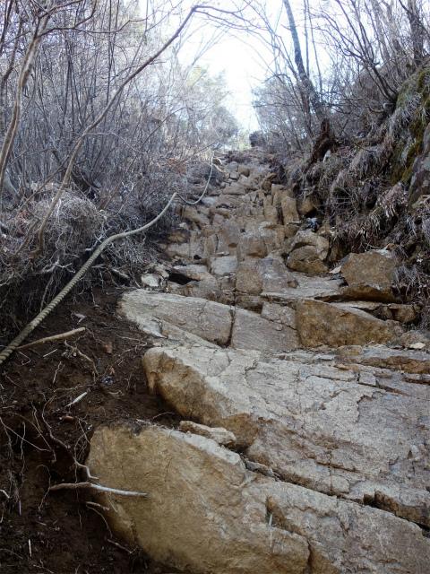 鬼ヶ岳(淵坂峠~毛無山~十二ヶ岳)登山口コースガイド 十一ヶ岳直下のロープ【登山口ナビ】