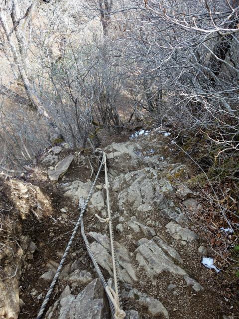 鬼ヶ岳(淵坂峠~毛無山~十二ヶ岳)登山口コースガイド ロープ【登山口ナビ】