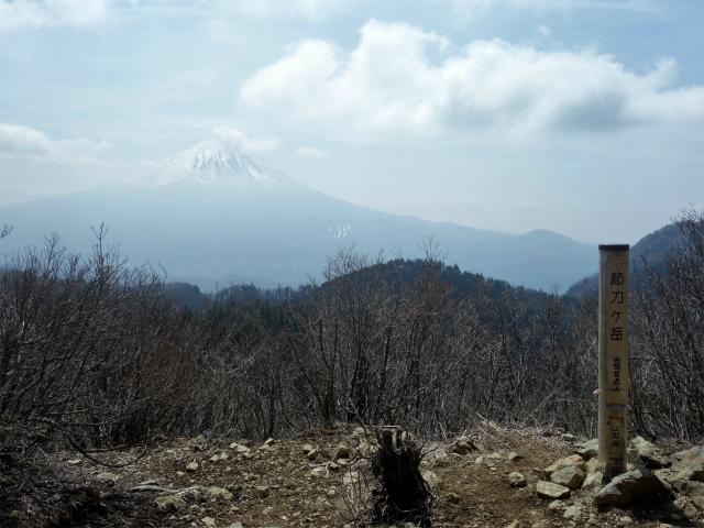 鬼ヶ岳(大石峠~節刀ヶ岳)登山口コースガイド 節刀ヶ岳山頂からの富士山【登山口ナビ】