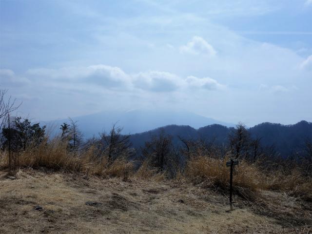 鬼ヶ岳(大石峠~節刀ヶ岳)登山口コースガイド 大石峠から富士山の眺望【登山口ナビ】