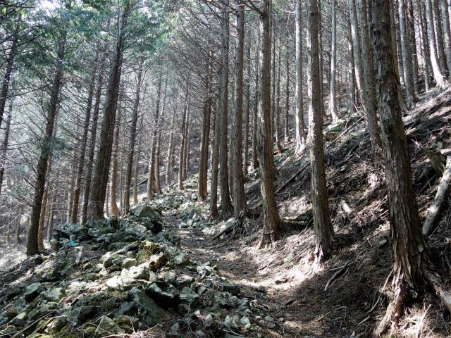 鬼ヶ岳(大石峠~節刀ヶ岳)登山口コースガイド【登山口ナビ】