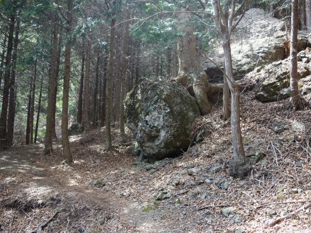 鬼ヶ岳(大石峠~節刀ヶ岳)登山口コースガイド 大石【登山口ナビ】