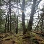 黒金山(徳和~乾徳山)登山口コースガイド 北峰【登山口ナビ】