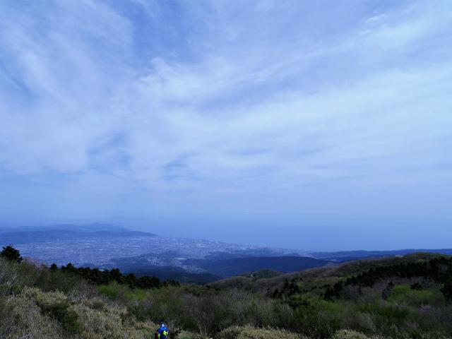 明神ヶ岳(二宮金次郎柴刈り路~金時山)分岐からの相模湾の眺望【登山口コースガイド】