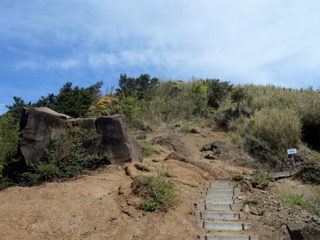 明神ヶ岳(二宮金次郎柴刈り路~金時山)巨石【登山口コースガイド】