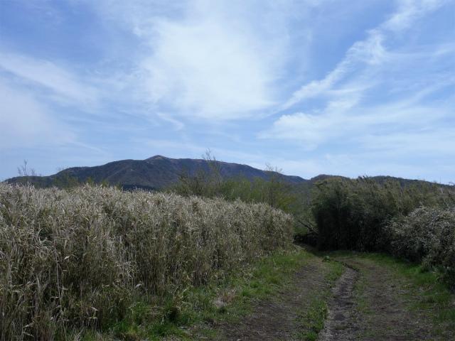 明神ヶ岳(金時見晴パーキング・火打石岳)稜線の眺望【登山口コースガイド】