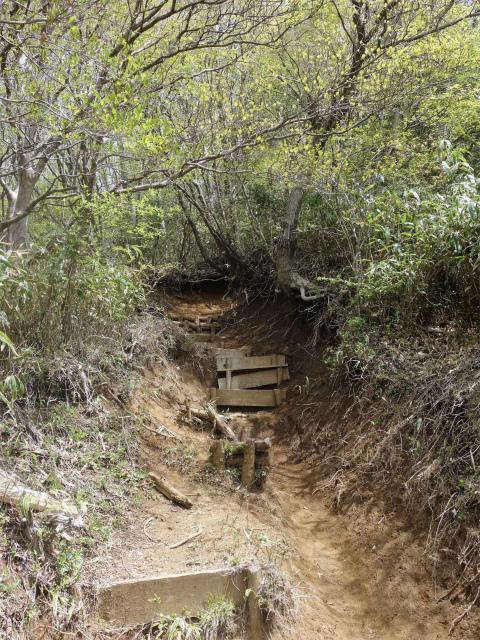 明神ヶ岳(金時見晴パーキング・火打石岳)階段【登山口コースガイド】