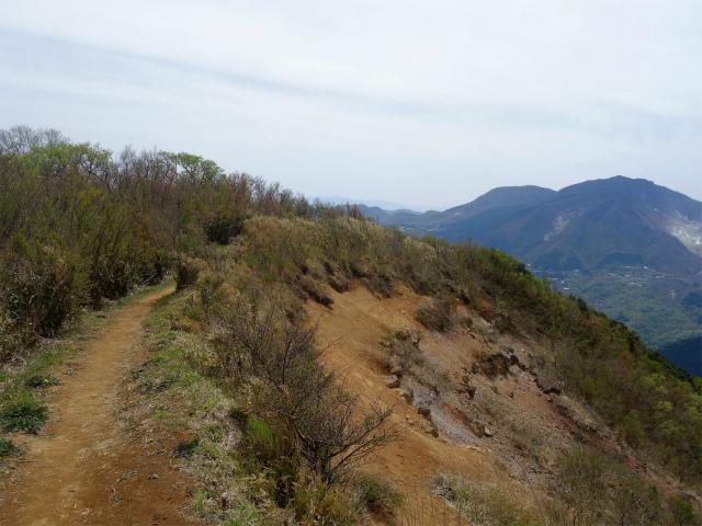 明神ヶ岳(金時見晴パーキング・火打石岳)崖斜面上部【登山口コースガイド】