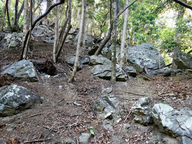 両神山(天理岳~天武将尾根) 登山口コースガイド 急傾斜の尾根【登山口ナビ】