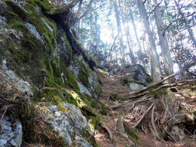 両神山(天理岳~天武将尾根) 登山口コースガイド 苔むした大岩【登山口ナビ】