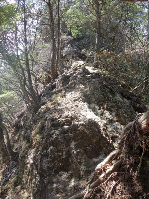 両神山(天理岳~天武将尾根) 登山口コースガイド 狭い岩稜【登山口ナビ】
