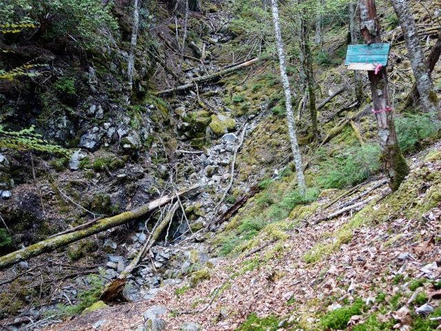 十文字峠・十文字山(毛木平コース)中間点の水場【登山口ナビ】