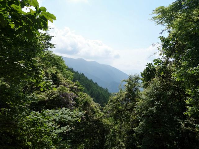 飛龍山(大常木林道~岩岳尾根)登山口コースガイド 茅谷尾根合流点からの眺望【登山口ナビ】