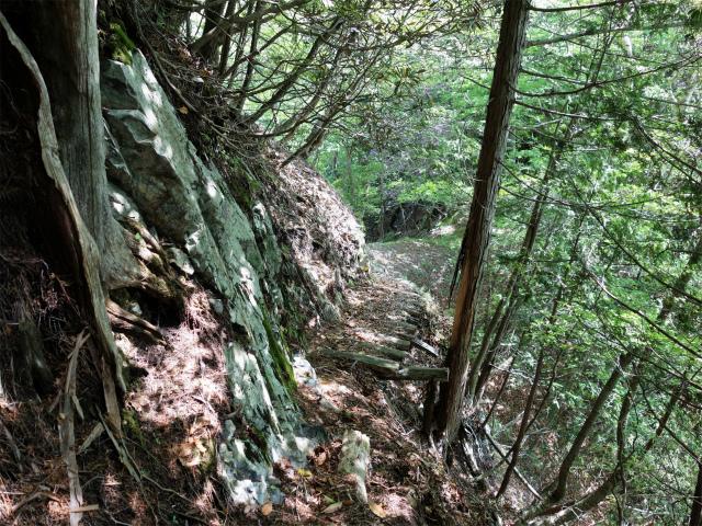 飛龍山(大常木林道~岩岳尾根)登山口コースガイド 右トラバースの木橋【登山口ナビ】