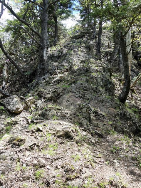 飛龍山(大常木林道~岩岳尾根)登山口コースガイド 合流点手前の岩稜【登山口ナビ】