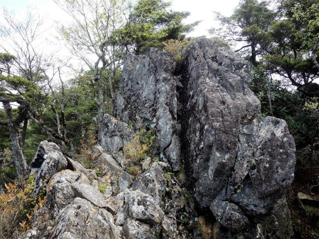 飛龍山(大常木林道~岩岳尾根)登山口コースガイド 岩稜直登【登山口ナビ】
