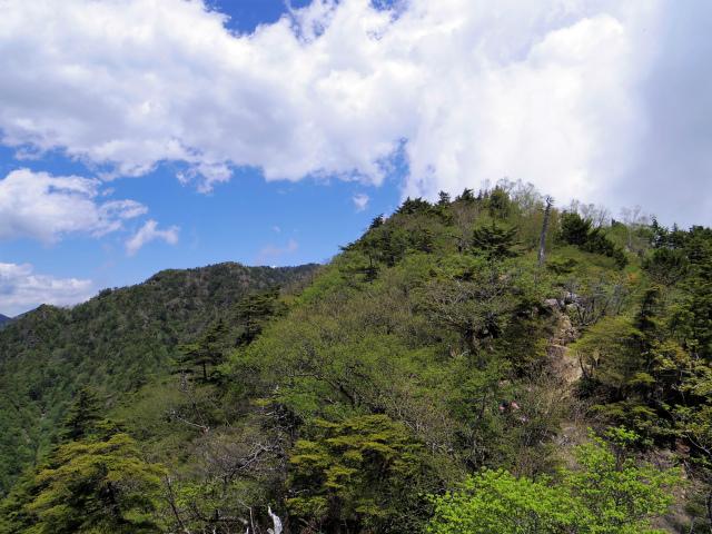 飛龍山(サオラ峠~ミサカ尾根)登山口コースガイド 露岩から前飛龍【登山口ナビ】
