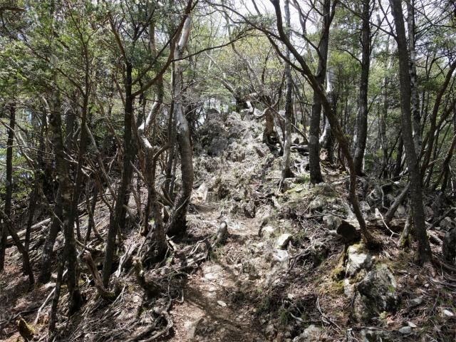 飛龍山(サオラ峠~ミサカ尾根)登山口コースガイド 露岩の急登【登山口ナビ】