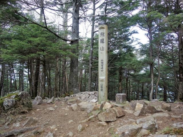 飛龍山(サオラ峠~ミサカ尾根)登山口コースガイド 飛龍山山頂【登山口ナビ】